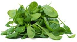 Ein Haufen Spinatblätter
