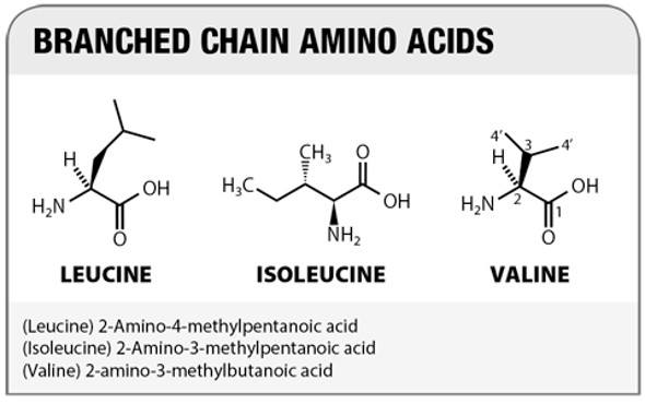 Chemische Struktur der verzweigten Kette