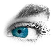 Auge auf weißen Hintergrund