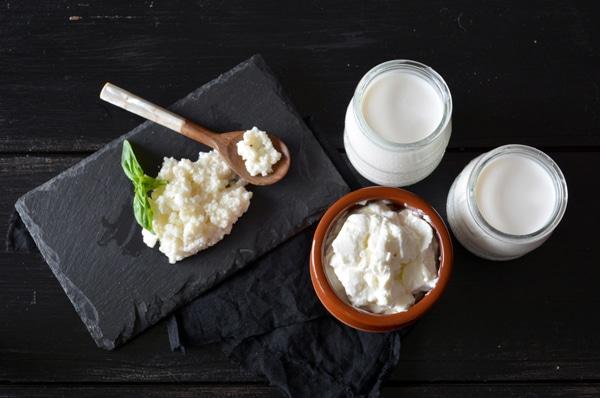 Kefir, Milch und Joghurt