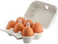 Sechs Eier in einem Karton