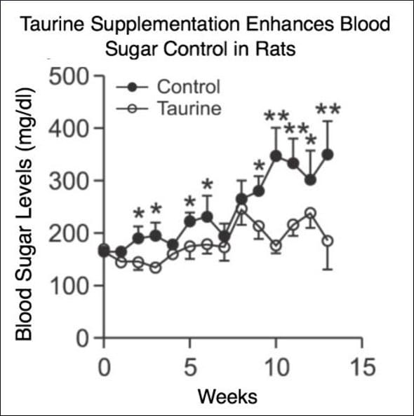 Taurin erhöht den Blutzucker bei Ratten