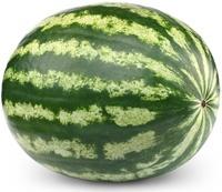 Ganze Wassermelone