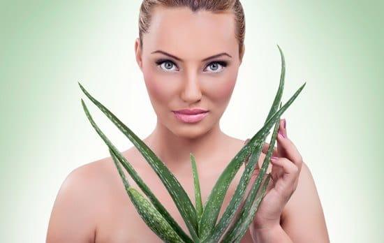 Frau, die eine Aloe Vera Pflanze hält